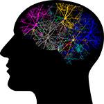 esquemas mentales psicologia cognitiva